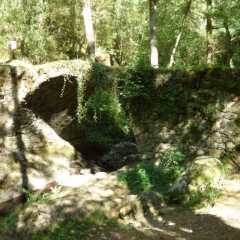 459 Pont de L'Hôpital