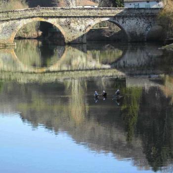 Canards au pont de Cirou