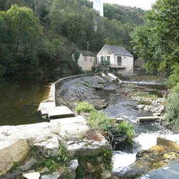 Moulin Haut de Tanus (81)